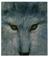 Obraz - olej na plátně - vlčí oči - 70x80 cm - zvětšit obrázek