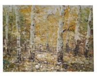 Obraz - olej na plátně - břízový háj - 40x30 cm - zvětšit obrázek